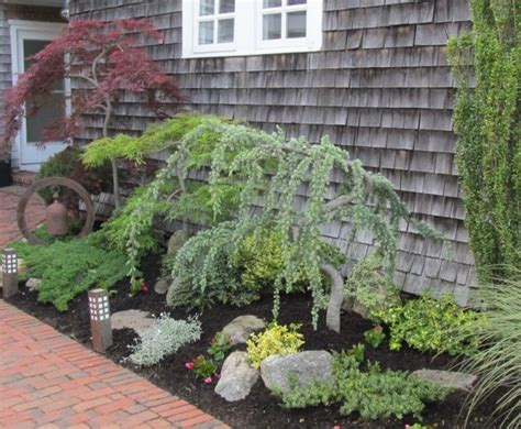 small landscape trees how close is too close planting ornamental trees near a