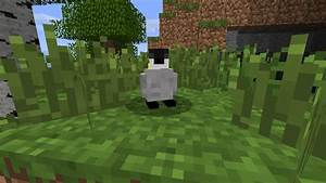 World Of Mobs Tameable Dwarfs And Penguins And Raccoon