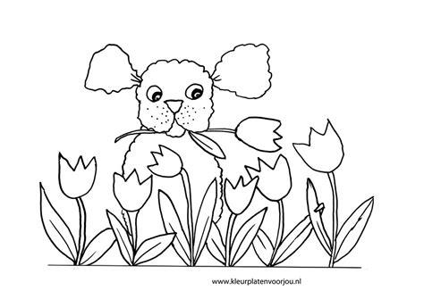 Kleurplaat Boomer Hondje by Moederdag Kleurplaat Hondje Met Tulpen Kleurplaat