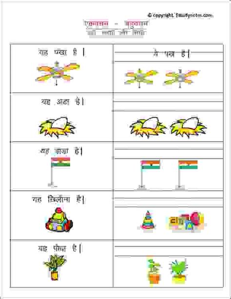 plural words worksheet  estudynotes