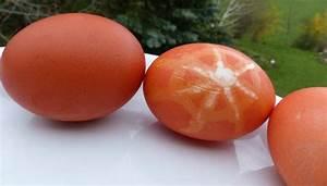 Eierfärben Mit Naturfarben : eier f rben mit krappwurz ~ Yasmunasinghe.com Haus und Dekorationen