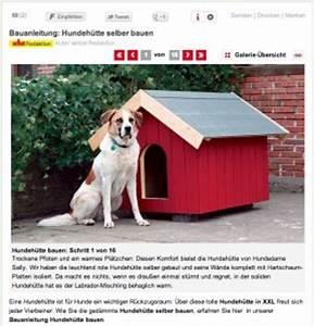 Hundehütten Selber Bauen : hundeh tte selber bauen hundeh tte bauen ~ Eleganceandgraceweddings.com Haus und Dekorationen