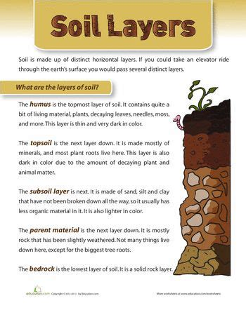layers of soil monitor poster and