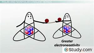 Covalent Bonds  Predicting Bond Polarity And Ionic