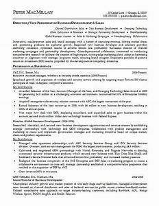 Resume format for accounts executive free download for Account executive resume examples