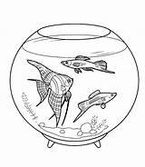 Fish Coloring Aquarium Pages sketch template