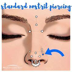 Encyclopedia of Body Piercings: Standard Nostril Nose