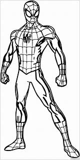 Spider Pages Coloring Spiderman Pose Superhero Colouring Drawing Poses Pokemon Avengers Printable Marvel Shopkins Boys Halloween Hulk Cartoon Wecoloringpage Cool sketch template