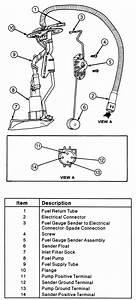 1998 Ford Explorer Fuse Diagram  U2014 Untpikapps