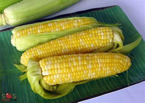 cuisiner des epis de mais épis de maïs