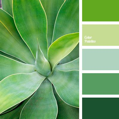 Palette Fresh Emerald Green by Color Palette 3836 Color Palettes Paletas De Colores