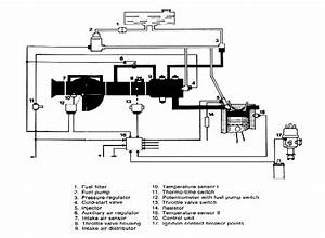 I Am Looking For A Vacuum Hose Diagram For A Vw Beetle  1979 Fi Convertible