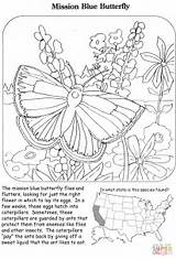 Coloring Butterfly Mission Printable Paper Puzzle sketch template