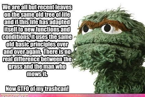 Oscar The Grouch Meme - 61 best grouch images on pinterest funny stuff cartoon and funny images