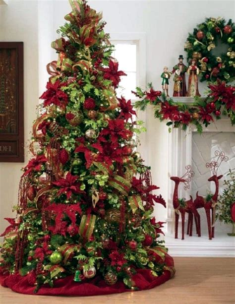 buy christmas trees helpful tips on how to choose the