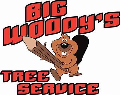 Woody Testimonials Services Chattanooga Tn