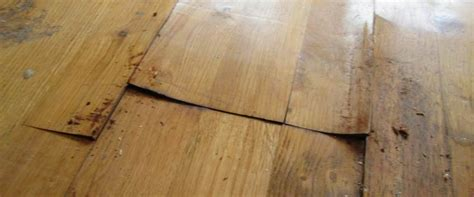 how to repair buckled parquet floors