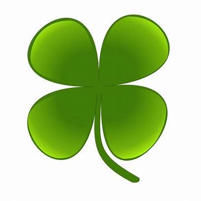 Shamrock Clipart Lucky Luck Clip Clover Knightnews