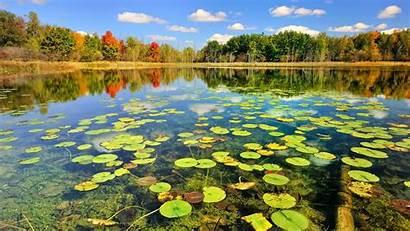 Pond Wallpapers Lake Desktop Background Definition Backgrounds