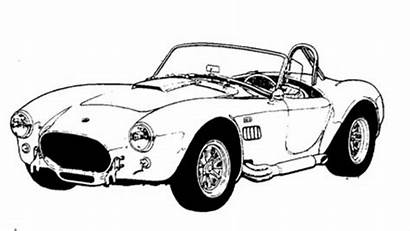 Cobra Shelby Drawing Coloring Pages Ford Mustang