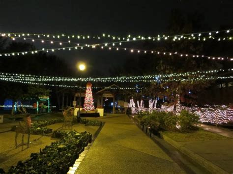 lewis lights purvis ms road trip to 10 of the most magical christmas displays in