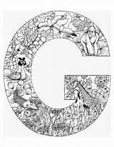 Coloring Pages Alphabet Animal Colouring Letter Adult Adults Aa Printable sketch template