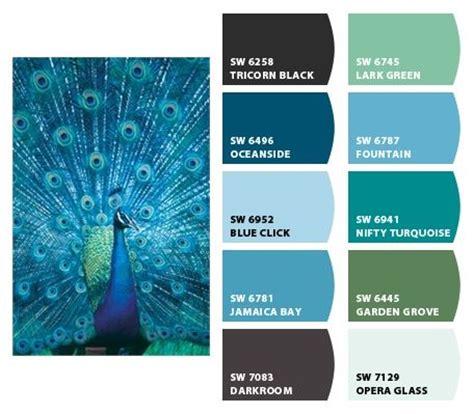 best 25 peacock color scheme ideas on pinterest peacock