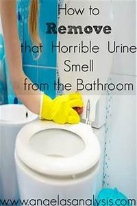 remove cat urine cat urine smells and cat urine on pinterest With how to get urine smell out of bathroom