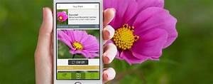 Blumen Erkennen App : funktioniert gut pflanzen und schmetterlinge per app ~ A.2002-acura-tl-radio.info Haus und Dekorationen