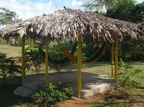 Hammock Hut by Hammock Hut Picture Of Percy S Riverside Retreat Orange