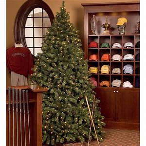 Sequoia Commercial Christmas Tree
