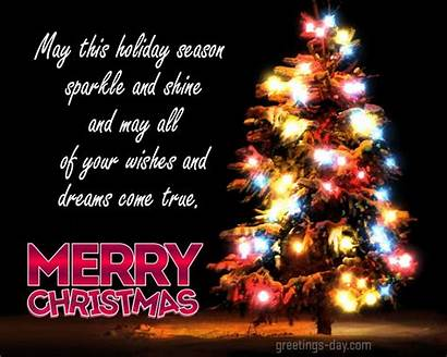 Holiday Sparkle Shine Come True Wishes Merry