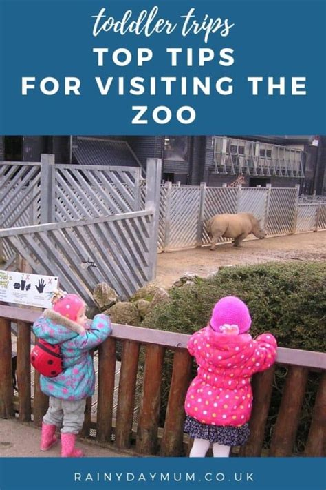 zoo visiting toddler activities after