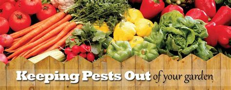 How To Keep Pests Out Of Your Garden-farm And Dairy