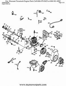 31 Tecumseh Engine Parts Diagram Download