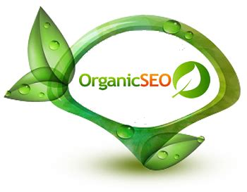 organic seo seo company in gujarat features of an organic seo company
