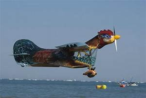 The Aviationist » The Flying Rooster proves even weird ...