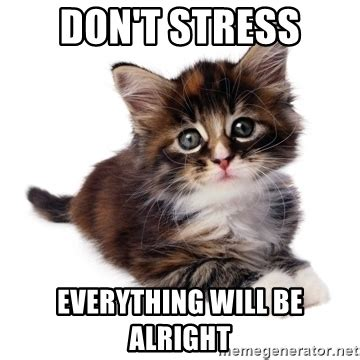 dont stress    alright fyeahpussycats