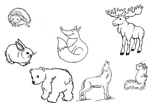 Disney Ausmalbilder Tiere : Ausmalbilder Waldtiere Kostenlos