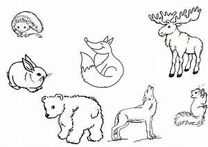 Bastelvorlagen Tiere Zum Ausdrucken : ausmalbilder waldtiere kostenlos malvorlagen zum ausdrucken page 2 sur 2 ~ Frokenaadalensverden.com Haus und Dekorationen