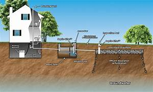 Bacteria And Soil Issues  Common Septic Tank Problems