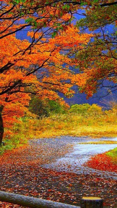 fall scene wallpaper  images