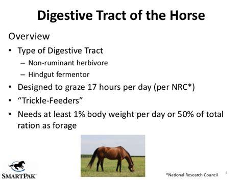 digestive webinar health non