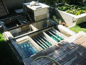 Filtration Biologique Pour Bassin A Poisson : bassin de jardin maintenance la filtration ~ Premium-room.com Idées de Décoration