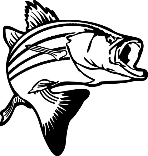 Bass Clipart Fishing Clipart Clipart Panda Free Clipart Images