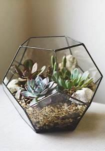 Terrarium Plante Deco : un terrarium en m tal rempli de plantes grasses color es ~ Dode.kayakingforconservation.com Idées de Décoration