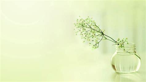 Fresh Wallpaper Desktop by Abstract Flowers Fresh Wallpapers Hd Desktop