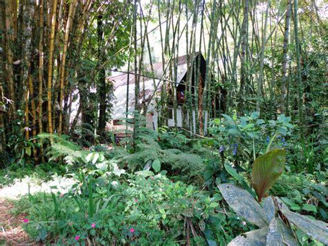 Jardín Botánico Las Cusingas, Guápiles
