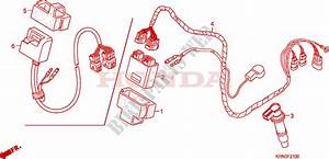 Wire Harness For Honda Crf 250 R 2007   Honda Motorcycles