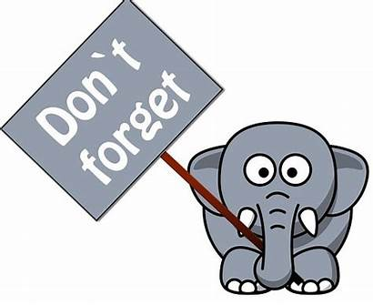 Memory Term Short Forget Remembering Clipart Elephant